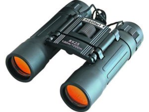 binokl-sledopyt-8-25-pf-bt-10