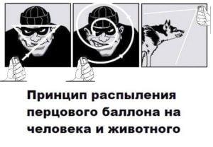 percovyj-ballonchik-kupit-v-yaroslavle